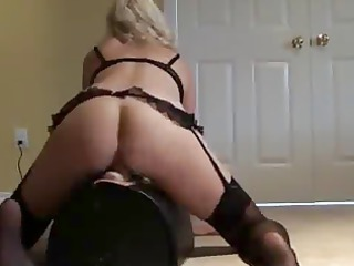 cougar drives sybian