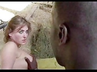 mr funkmaster brothalovin chicks interracial