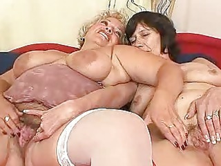 bushy fresh wives first part homosexual woman