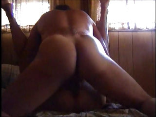 cougar cream pie